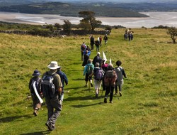 Walking the pilgrimage in Morecambe Bay