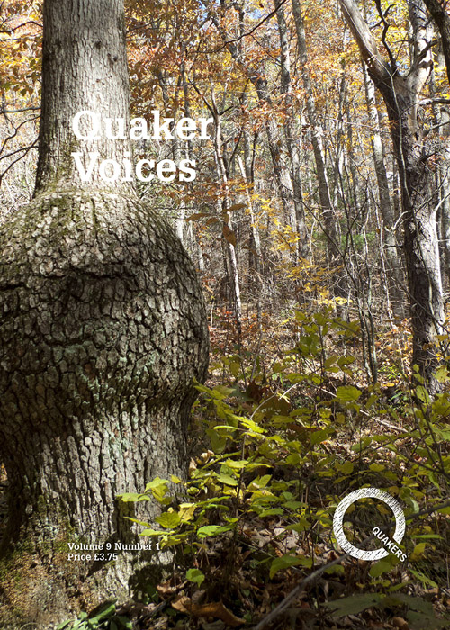 Quaker Voices cover showing trees in a forest