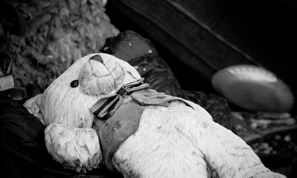 black and white image of teddy bear