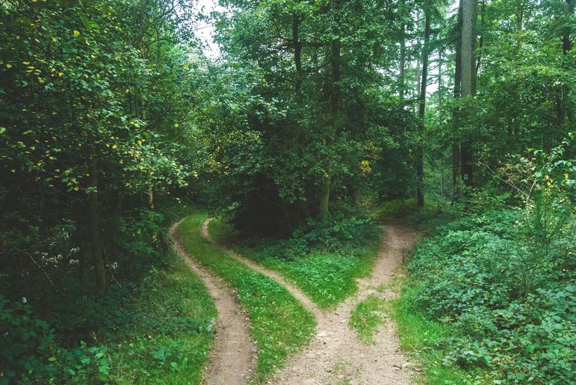 Quakers are on the right path – but can we do more? Photo: Jens Lelie/Unsplash