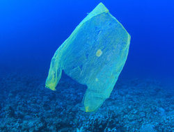 Three ways Quakers are changing attitudes to plastic