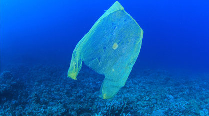 A plastic bag in the ocean