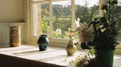 sunlight streaming through an old window frame. Light shines on to a marbled blue vase in the window and a pot of greenery and white flowers