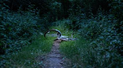 A blue bicycle abandoned on a woodland path